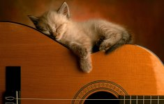 Léonie et sa guitare