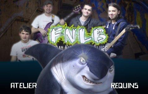 Atelier requins